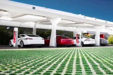 Pionier von Elektroautos: Tesla